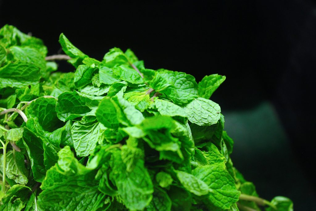 mint leaves as home remedy for loose motions