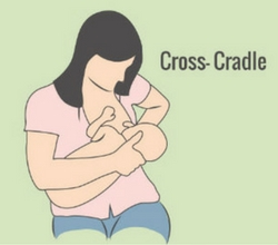 cross cradle position