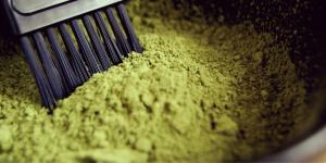 Best organic henna powder for hair in India